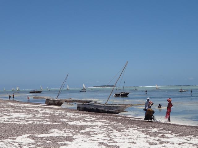 Women waiting for the fishermen
