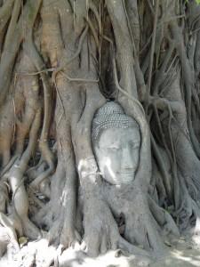 E buddha head R
